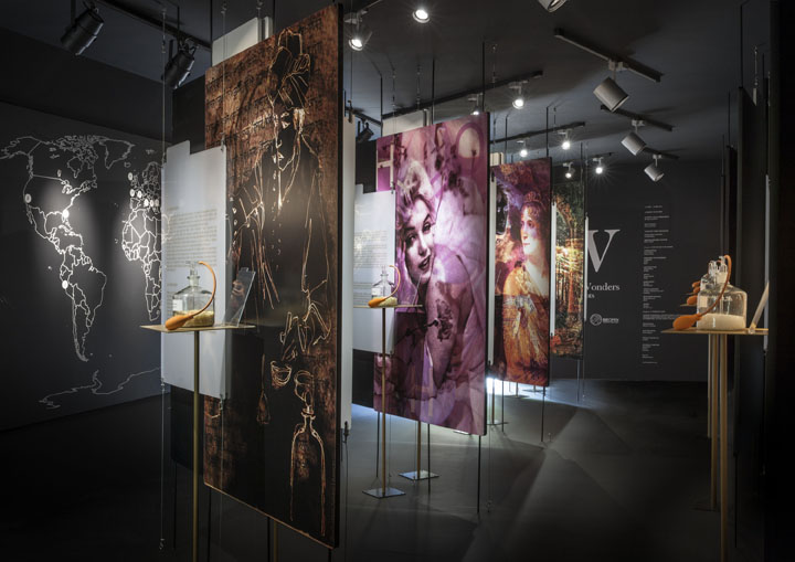 The Garden of Wonders_A Journey Through Scents_ph Adriano Brusaferri
