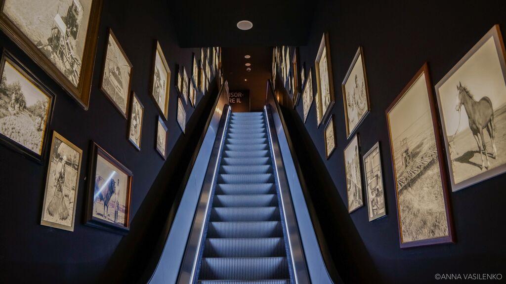 Le scale con la galleria animata (1)