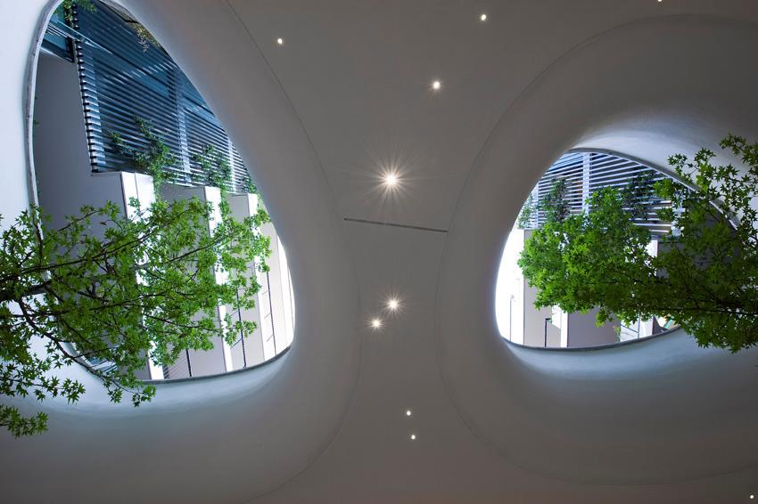 Westway-Architects-Uno-sguardo-verso-lalto