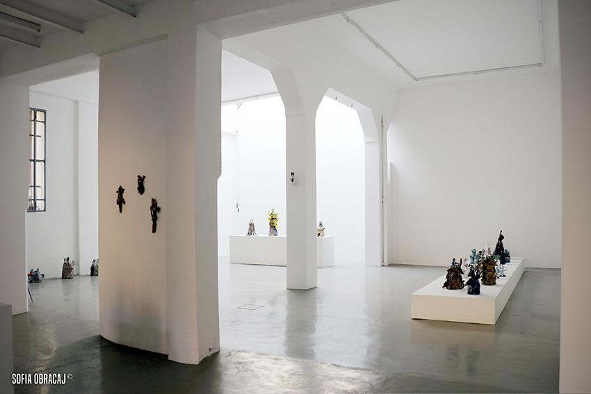 Interno della galleria Lanteri con le opere di Saraï Delfendhal