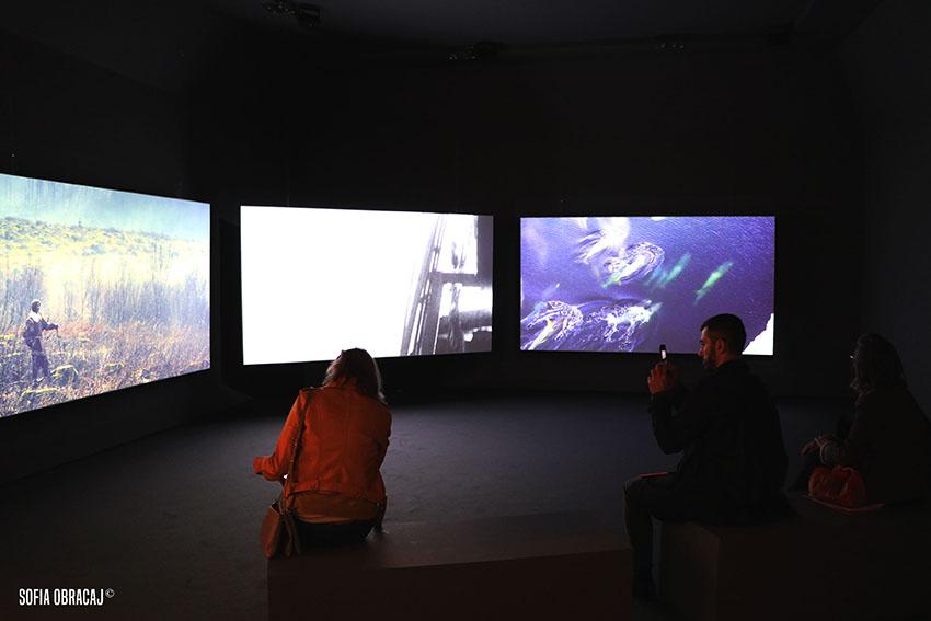 Vista dell'installazione di John Akomfrah, Vertigo Sea