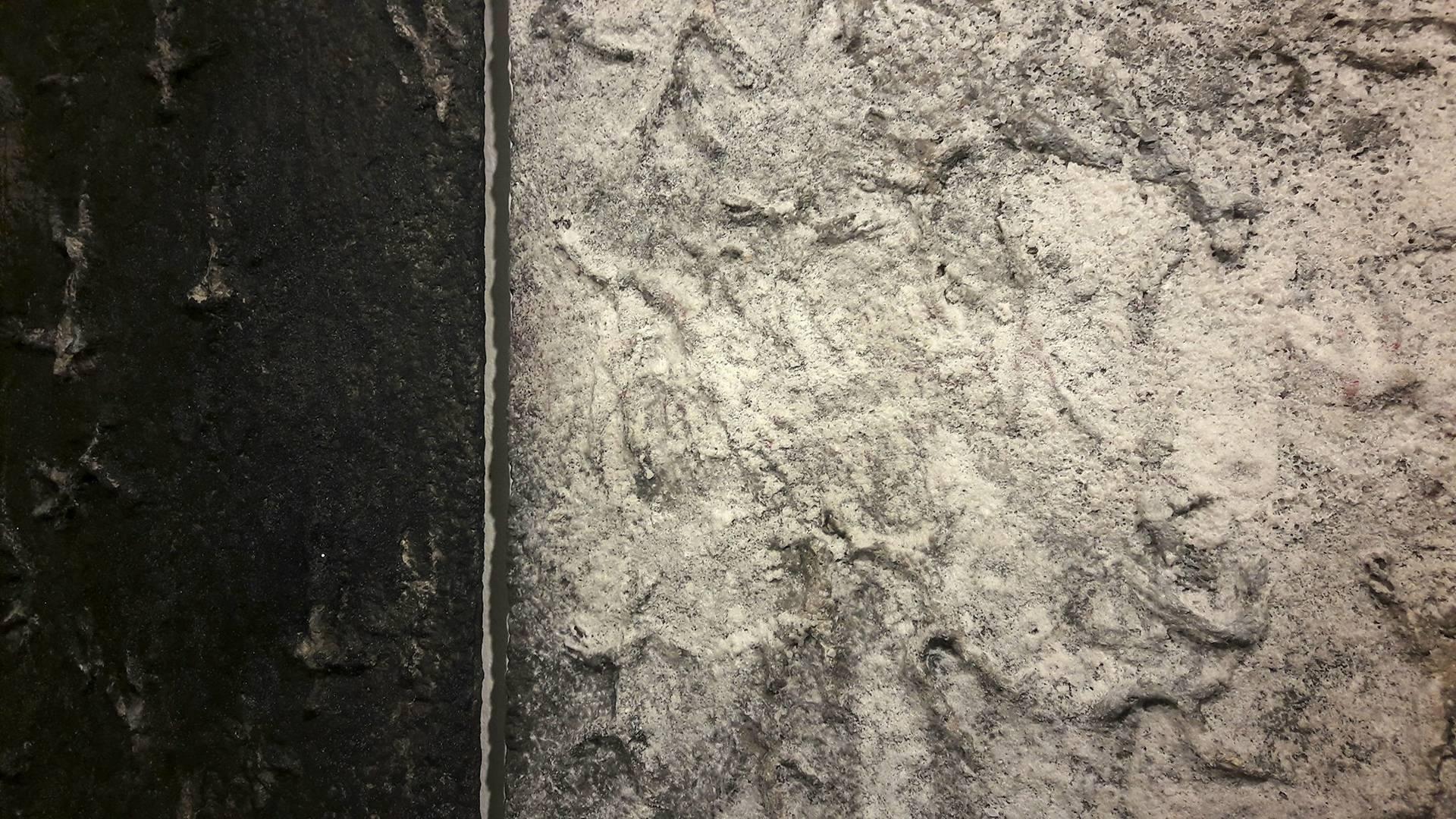 Nero e bianco per la pietra di carta. Daniela Barzaghi in mostra presso Sblu spazioalbello