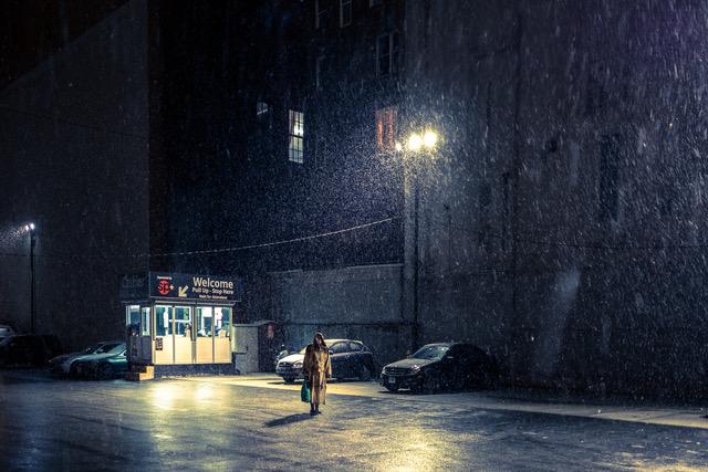 New York è anche solitudine, la street fauna di Palazzo
