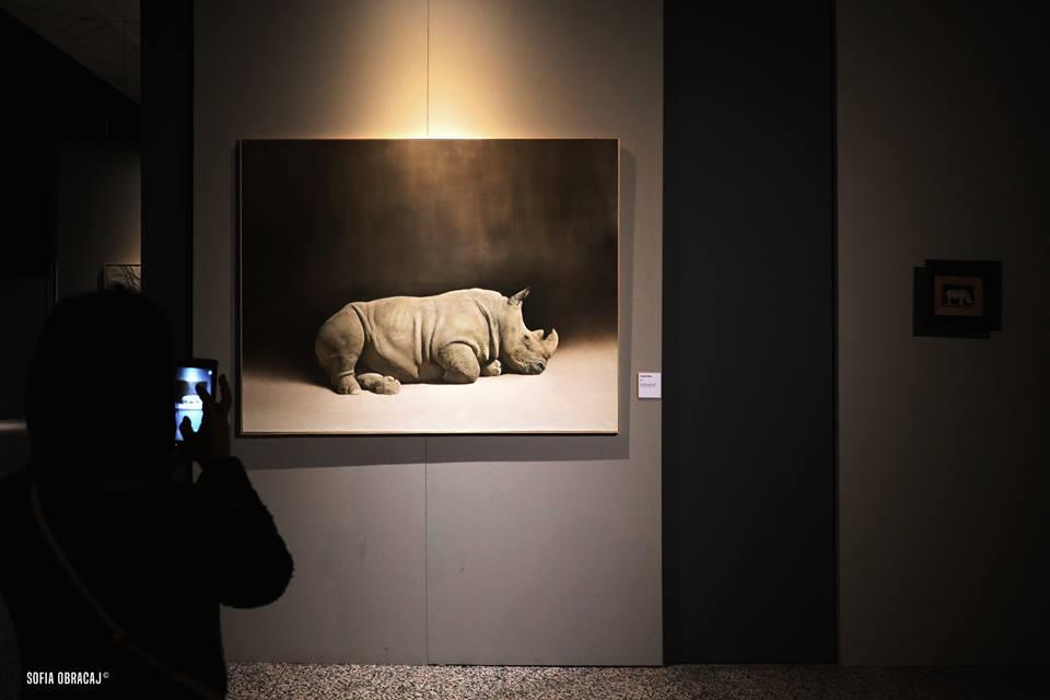 Record di visite per Tamer e iil suo rinoceronte