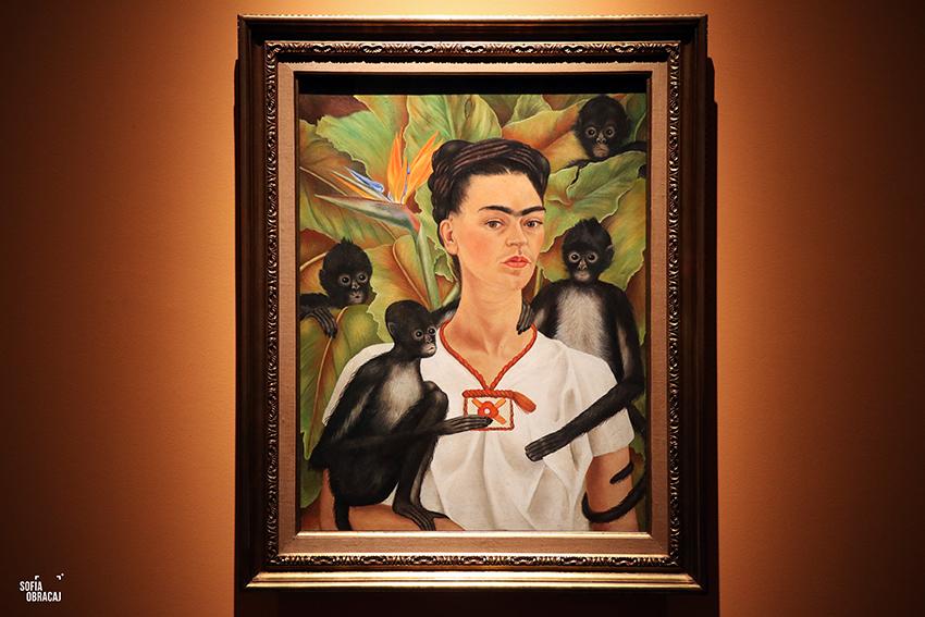 Firda Kahlo nell'Autoritratto con scimmie