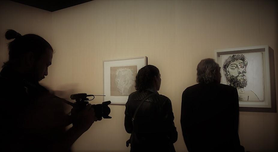 Picasso metamorfosi. Visitatori