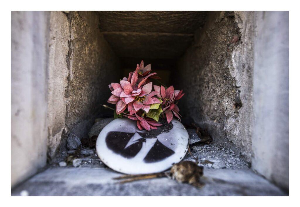 Fiori nei cimiteri. Progetto di Sara Meliti. Resistenza. artscore.it
