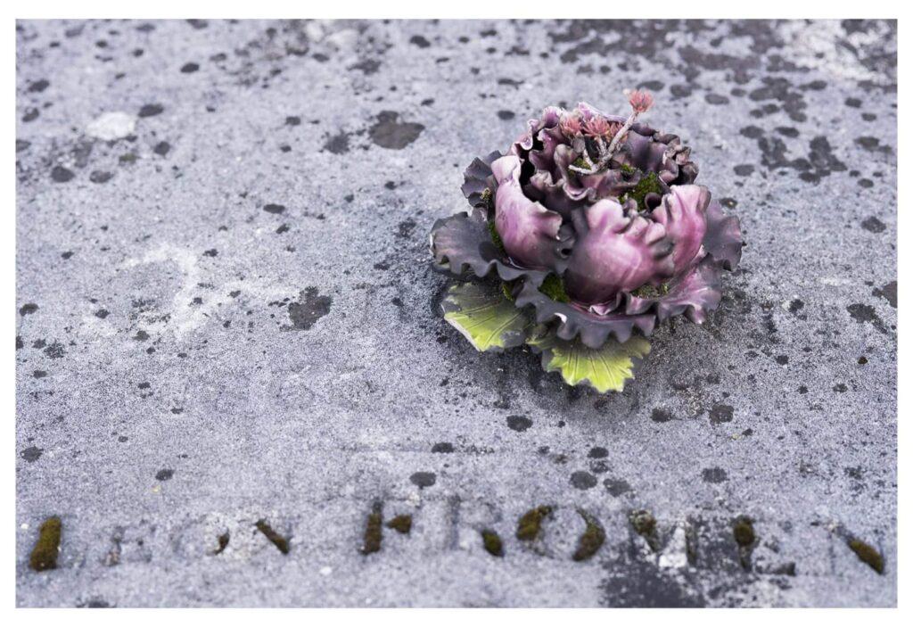 Fiori nei cimiteri. Progetto di Sara Meliti. Parigi. artscore.it