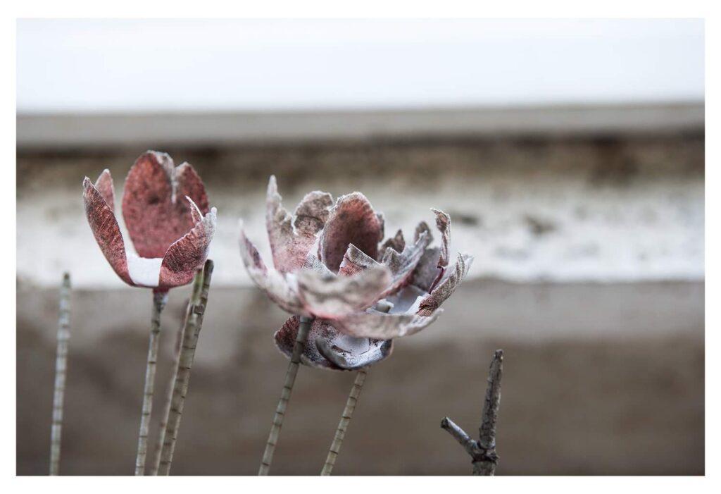 Fiori nei cimiteri. Progetto di Sara Meliti. Solitudine resistente. artscore.it